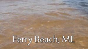 Ferry Beach cover