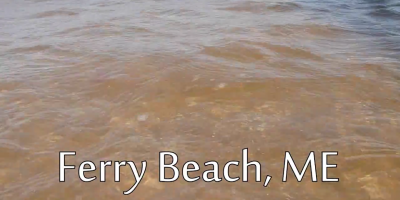 Ferry Beach cover