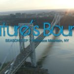 Nature's Bounty cover art - aerial view of the George Washington Bridge.